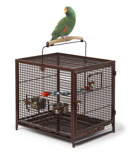 MidWest Avian Adventures Poquito Avian Hotel, Ruby by MidWest Homes for Pets