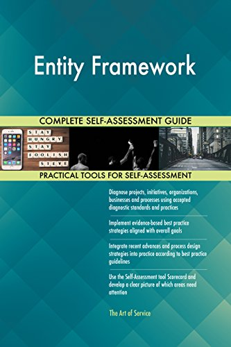 Entity Framework Toolkit: best-practice templates, step-by-step work plans and maturity diagnostics (Entity Framework Best Practices)