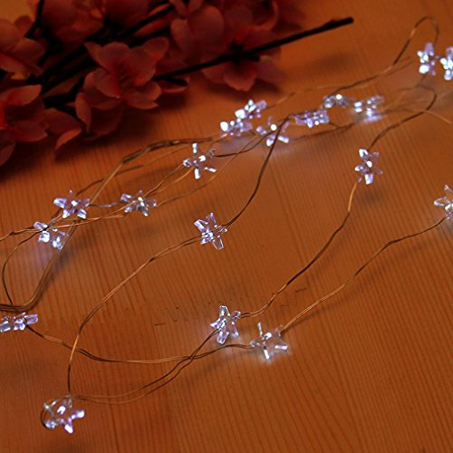 HP95(TM) 10 LED Star Light Cozy Wired Fairy Lights for Bedroom Xmas Wedding Party (White)