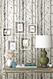 Birch Trees Repositionable and Removable Peel and Stick Wallpaper