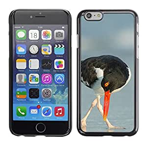 A-type Arte & diseño plástico duro Fundas Cover Cubre Hard Case Cover para Apple (5.5 inches!!!) iPhone 6+ Plus / 6S+ Plus (Seagull Beak Sea Summer Nature Bird)