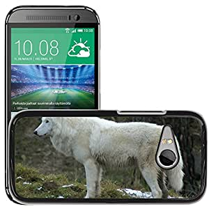 Hot Style Cell Phone PC Hard Case Cover // M00109746 Wolf Zoo Forest Canine Mammals // HTC One Mini 2 / M8 MINI / (Not Fits M8)