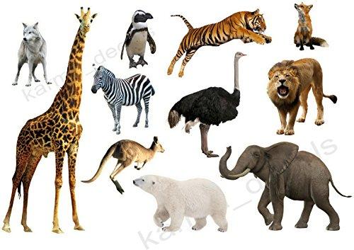 Zoo animals sticker set 11 animals pieces Decal Movie WALL STICKER Home Decor Art Sticker Room Decor
