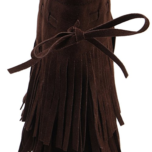 LongFengMa Women's Round Toe Block High Heel Tassels Suede Ankle Boots Brown LeiV0XT