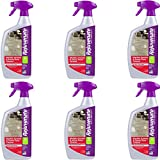 Rejuvenate Marble Granite and Stone Floor Cleaner – Instantly Removes Dirt and Grime - Non-Toxic Streak Free Shine – 32 oz. (6 Pack)