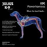 Julius-K9 16STEALTH-P-1 IDC Stealth Powerharness