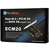 SilverStone Technology SST-ECM20 Dual M2 to PCI-E