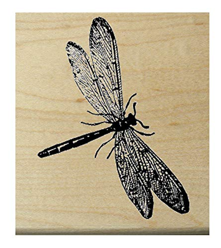 P11 Miniature Dragonfly rubber stamp WM 1x1