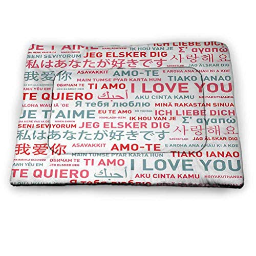 Dog Beds Love Housebreaking Absorption Pads Celebration of Love with Colorful Letters and Heart Romantic Marriage Inspired Design Multicolor