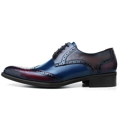 AEMUT Zapato Formal para Hombre Casua Punta Estrecha Oxford ...
