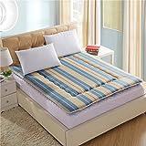 FDCVS Bedroom Thicken Keep warm Tatami mats Mattress, Student [dorm room] Mattress-F 150x200cm(59x79inch)