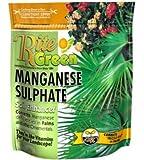 SUNNILAND 150091 Manganese Sulphate Soil Enhancer, 4 lb