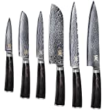 XYJ Kitchen Knives Set 67 Layers Japanese VG10 Damascus Steel Color Wood Handle 6 Piece Set Cooking Knife Best Gift