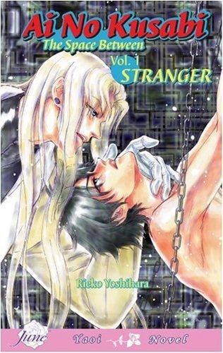 Ai No Kusabi The Space Between Volume 1: Stranger (Yaoi Novel)