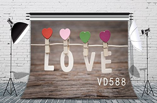 LB 7x5ft Valentine's Day Vinyl Photography Backdrop Customized Love in Spring, Summer, Autumn and Winter Photo Background Studio Props VD588