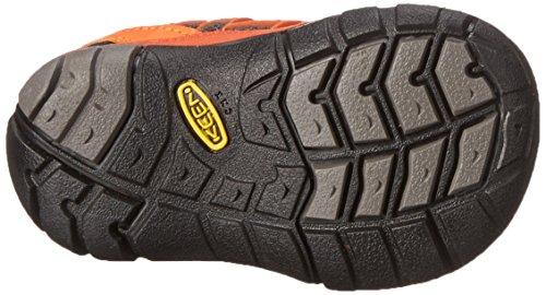 Keen Kinder Schuhe Chandler CNX Tots gargoyle / koi 19
