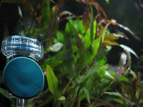 AQUATEK 3-in-1 CO2 Diffuser &Bubble Counter Check Valve (Large)