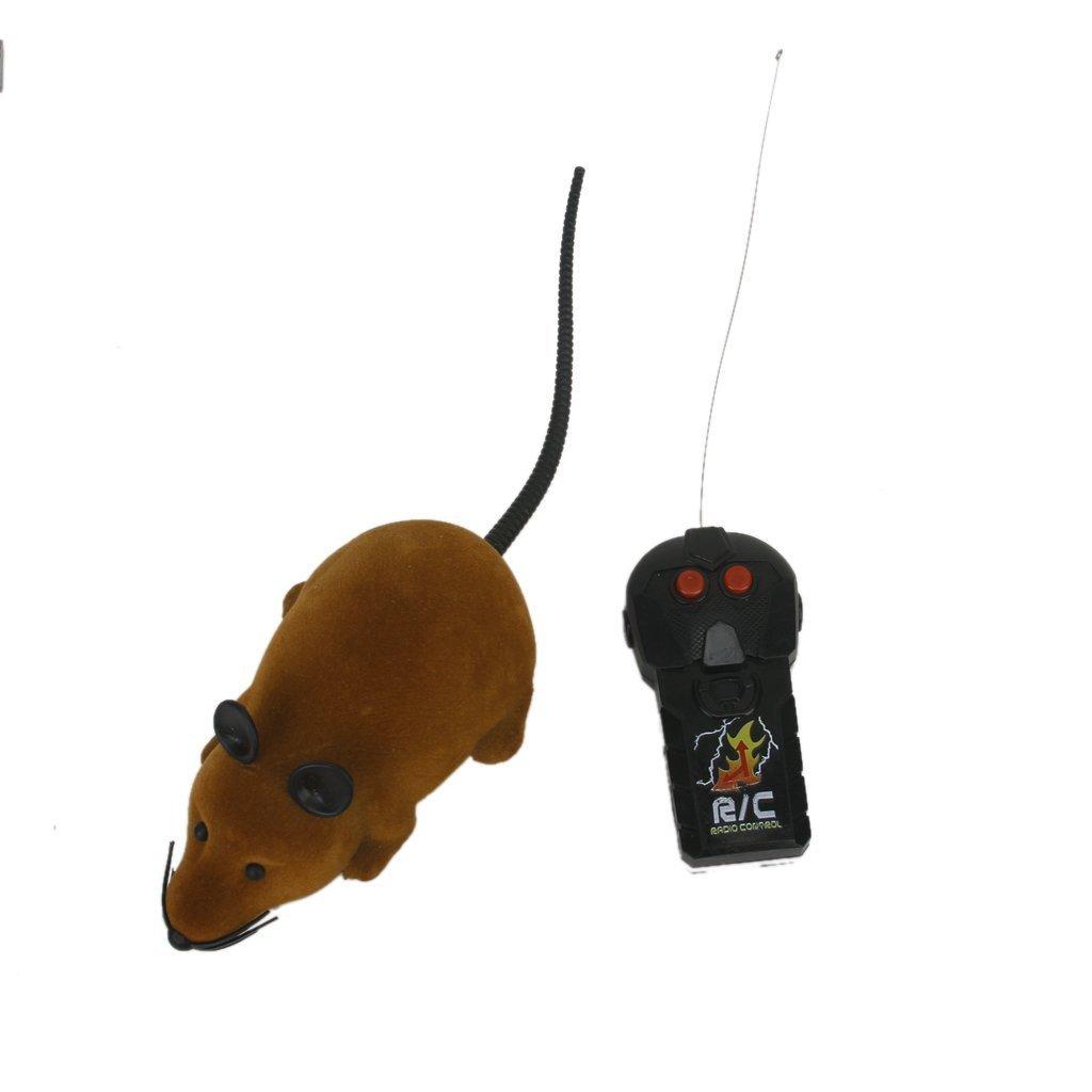 TO_GOO Ratón teledirigido para ratón RC con Regalo de Juguete con Control Remoto para niños Mayores de 3 años Gris (Cola Blanca): Amazon.es: Productos para ...
