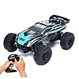 Fitiger 15km/h 1/24 Scale 2.4GHZ Radio Controlled Car (Small Image)