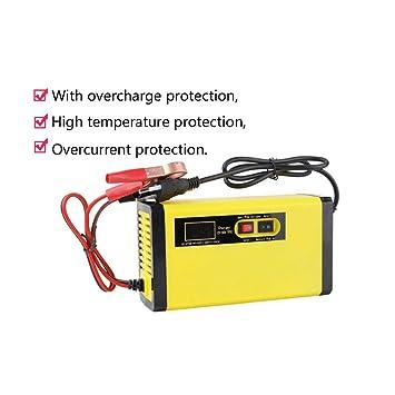 DZSF 12V 8A Cargador de batería de Coche Completamente ...