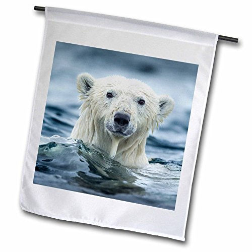 3dRose Danita Delimont - Bears - Canada, Repulse Bay, Polar Bear pokes its head above water. - 12 x 18 inch Garden Flag (fl_257551_1) -