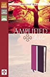 Amplified Bible, Zondervan Publishing Staff, 0310439167