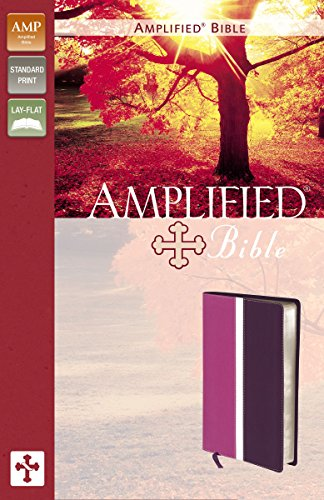 Amplified Bible: Dark Orchid / Deep Plum, Italian Duo-Tone (Imitation Orchids)