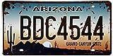 ERLOOD Arizona BDC4544 Retro Vintage Auto License Plate Tin Sign Embossed Tag Size 6 X 12