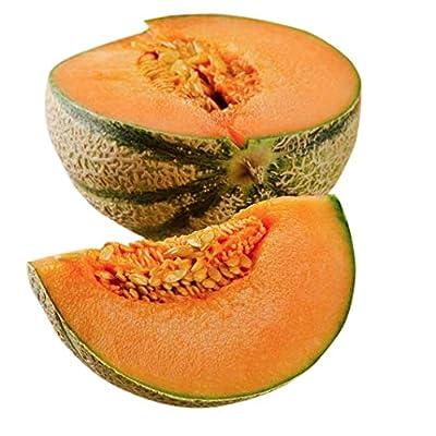 Charentais Melon - Cantaloupe Type : Garden & Outdoor