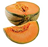Charentais Melon - Cantaloupe Type