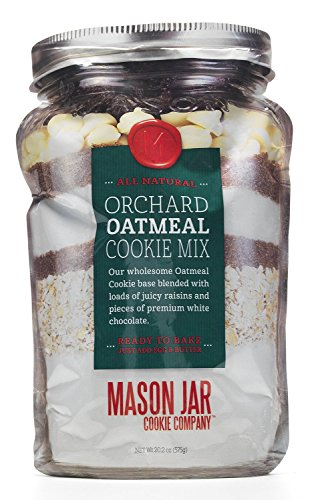 The Mason Jar Cookie Company Orchard Oatmeal Cookie Mix in A Pouch, 20.5 Ounce