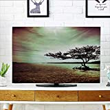 Television Protector Living Room droom and DoAccessories College List of Kind Machine Television Protector W19 x H30 INCH/TV 32''