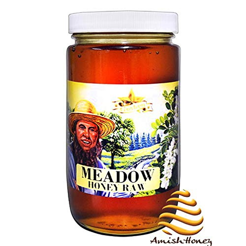 Goshen Honey Amish Extremely Raw MEADOW / Steppe Blossom Honey 100% Natural Domestic Honey with Health Benefits Unfiltered Unprocessed OU Kosher Certified | 1 Lb Glass Jar