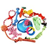 VEYLIN 12 pcs Dog Toys Chewing Rope Ball Small Medium Dogs Training Releasing Pressure Review