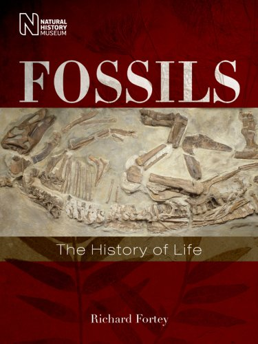 Fossils: The History of Life