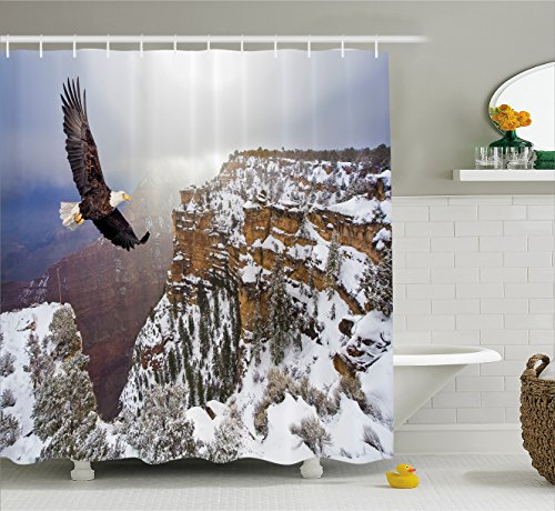 Wildlife Decor Shower Curtain by Ambesonne, Aerial View of Bald Eagle Flying in Snowy Grand Canyon Rocky Arizona