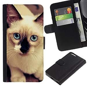EJOY---La carpeta del tirón la caja de cuero de alta calidad de la PU Caso protector / Apple Iphone 6 PLUS 5.5 / --Gato siamés azul blanca felina