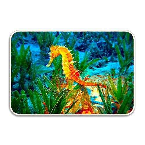 PlayA Animal Seahorse Water Green Yellow Floor Mat Coral Fleece Home Decor Carpet Indoor Rectangle Doormat Kitchen Floor Runner 16