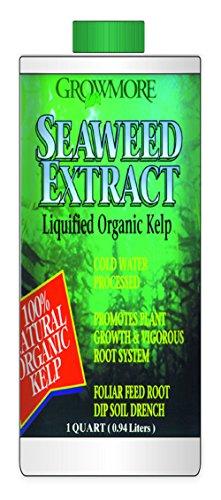 growmore seaweed extract - 1