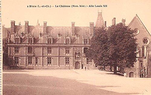 Le Chateau Aile Louis XII Blois France Postcard ()