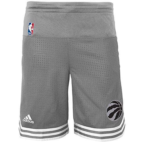 Toronto Raptors Youth adidas Gray Swingman Pre Game Shorts (Medium 10/12) Adidas Nba Basketball Shorts