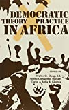 Democratic Theory and Practice in Africa, Oyugi, Walter O., 0435080261