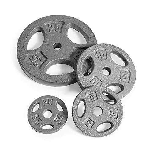 CAP Barbell Standard 1-Inch Grip Weight Plates, Single, Gray  10 Pound (SET OF 2)