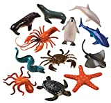 12 Sensational Sea Life Animals. Hmmm...a hammerhead shark? Kids will enjoy learning about these and other exotic sea animals as they play. This collection of plastic Sensational Sea Life Animals includes a variety of sharks, whale, dolphin, seal, se...