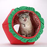 The Cat Ball Novelty cat Bed That Looks Like a Strawberry