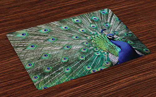 (Lunarable Peacock Place Mats Set of 4, Peacock Displaying Elongated Majestic Feathers Open Wings Picture, Washable Fabric Placemats for Dining Room Kitchen Table Decor, Brown Navy)