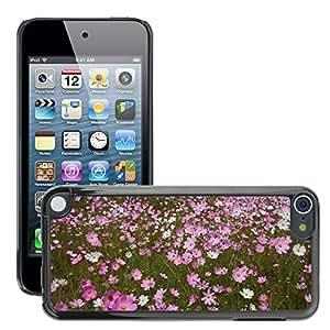 Print Motif Coque de protection Case Cover // M00293077 Cosmos flores Campo de flores // Apple ipod Touch 5 5G 5th 6 6G 6th