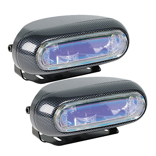 Hella Fog Light Lens (Hella H71010301 Optilux Model 1250 12V 55W H3 Fog Light Kit with Carbon Fiber Look and Blue Lens)