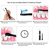Cellena Replacement Toothbrush Heads - Compatible