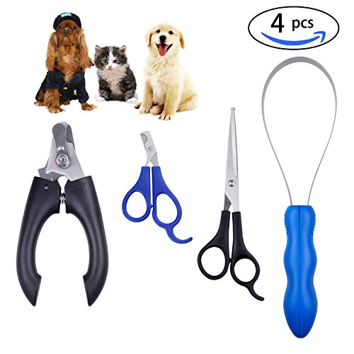 Home Pet Grooming - 4